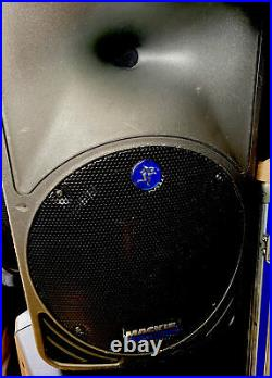 MACKIE SRM350 V1 Powered Speaker (the 10 inch Version of SRM450)
